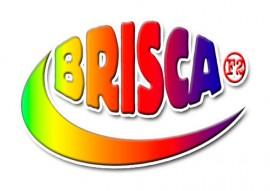 2017 BriSCA Micro Stock Car Driver's Licence